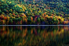 It's almost here..... Autumn :-)  A chance to walk among my trees again...! (Captions by Nica... (Fieger Photography)) Tags: forest fall foliage trees tree colorful colors reflections reflection landscape lake nature outdoor autumn quebec canada water serene bright
