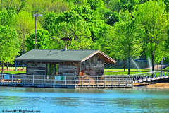 Private Dock (David Davila Photography) Tags: branson mo missouri vacation outdoor tree water geotag holuxm241 nikond800 2016