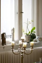 window pieces (daniel_james) Tags: 2016 berlin germany europe tamron60mmmacro schneberg ansbacherstrase wohnung apartment candelabra orchid flower windowsill
