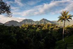 Kauai (jumig) Tags: princeville hawaii unitedstates us