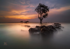 Every Step U Take (Jose Hamra Images) Tags: sunset sunrise landscape banten indonesia laguna labuhan labuan anyer cilegon carita
