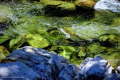 Haunting Waters (jimgspokane) Tags: idahostate salmonriver eastforkofthesouthforkofthesalmonriver camping forests rivers otw