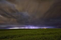 Purple rain (John Andersen (JPAndersen images)) Tags: airdrie canola clouds purple rain storm