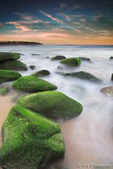 Green Rocks @ Curl Curl Beach (renatonovi1) Tags: green rock curlcurl beach sunset water sea ocean seascape landscape wave sydney nsw australia