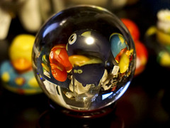 2016-07-24 Ducks under glass! (Mary Wardell) Tags: orb crystalball ducks superheroes fun
