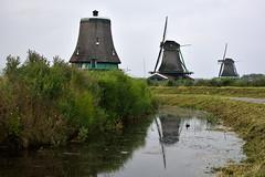 molens op de Zaanse Schans (dickschuitemaker) Tags: zaanse schans zaandam nederland molen