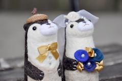 Noristudio Needle felted otters (noristudio3o) Tags: noristudio nori studio needle felting felted animals otters wedding cake topper figurines gift decor centerpiece gold blue bride groom handmade handcrafted