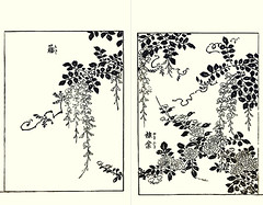 Japanese wisteria and Japanese kerria (Japanese Flower and Bird Art) Tags: flower wisteria floribunda fabaceae kerria japonica rosaceae tatsunobu kitao kano woodblock picture book japan japanese art readercollection