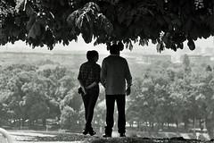 the view (missneltu) Tags: street film 35mm belgrade