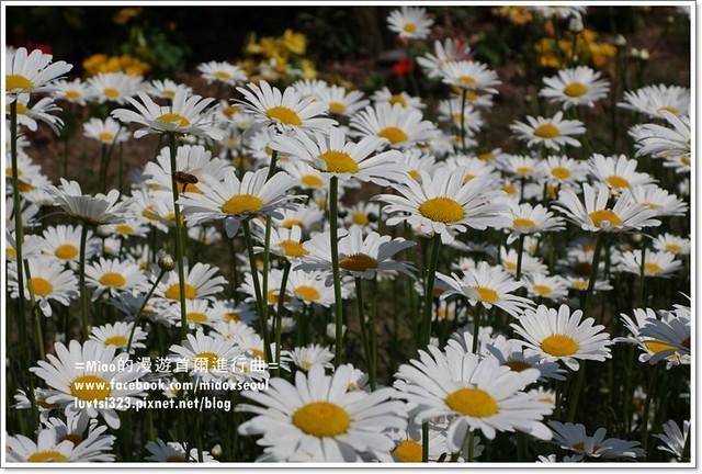 벽초지문화수목원71