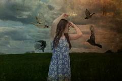{Defensive} (leahbell64) Tags: selfportrait me field birds defensive brookeshaden inspiredbybrookeshaden