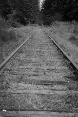 Tracks unused (cdnfish) Tags: blackandwhite bc britishcolumbia sony exploring perspective tracks rail railway explore vancouverisland duncan railwaytracks cowichanvalley cowichanstation a7m2 sonya7m2