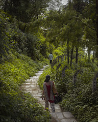 Pathway through the Forest . (Subir Thapa) Tags: nepal nepali travel canon asia summer monsoon explore