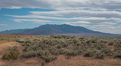 Mountain View - Cosgrave - Pershing County - Nevada - 17 June 2016 (goatlockerguns) Tags: mountain view cosgrave pershing county nevada dunglen desert nature natural usa unitedstatesofamerica west western sky blue mountains