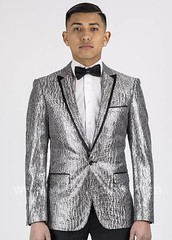 Giovanni Testi Sequined King (arzelapparel) Tags: wedding men celebrity silver shopping fire clothing birmingham suits slim manly alabama bowtie style clean suit prom tuxedo jacket mens hoover mensfashion blazer galleria fashionable bowties menswear sequined dinnerjacket silversuit riverchase slimfit arzel sequinedjacket slimsuit slimfitsuit suitgame arzek
