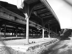 Terminal Ruins (reehren) Tags: jerseycity libertystatepark ruins terminal platform trainshed