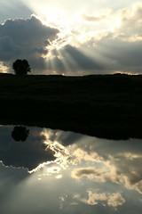 Catching Those Summer Rays (Derbyshire Harrier) Tags: summer reflection silhouette clouds evening peakdistrict nationaltrust crepuscularrays silverbirch moorland 2016 rspb peakpark bigmoor easternmoors littlebarbrook