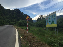 Highway QL20, Lm ng, Vietnam (Quench Your Eyes) Tags: lmng vietnam vietnamese asia biketour highwayql20 mountains nature southeastasia tpbolc travel trees