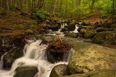 Waterfall (gennadiy.troitskiy) Tags:    bg