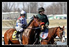 IMG_0630 (femalejockeys) Tags: femalejockeys turfway park female athletes horse racing horses thoroughbred kentucky derby