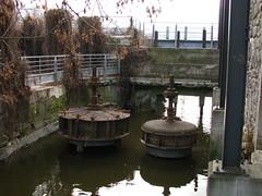 IMG_0962 (Gino Chnard) Tags: arbre cloture eau fleuve montral parcnaturedelledelavisitation ville laval quebec canada