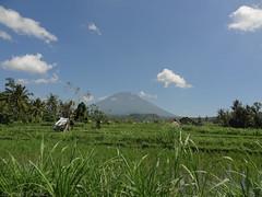 DSC05306.jpg (J0celyn79) Tags: asie bali indonésie karangasem id