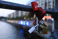 Love locks (Pascal Volk) Tags: berlin mitte spree berlinmitte liebknechtbrcke liebknechtbridge lovelocks liebesschlsser 35mm bokeh dof depthoffield canoneos6d canonef1635mmf4lisusm wideangle weitwinkel superwideangle superweitwinkel ultrawideangle ultraweitwinkel ww wa sww swa uww uwa abend evening