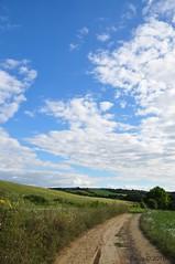 The road (Beata*) Tags: sky bluesky hungary nature landscape