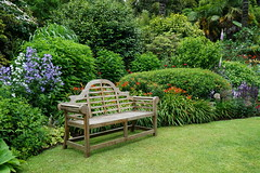 2016.07.014 Abbotsbury (1) (Kotatsu Neko 808) Tags: uk england gardens dorset subtropical abbotsbury abbotsburysubtropicalgardens