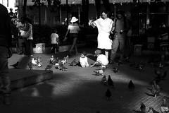 Sun (Luiz Contreira) Tags: street people bw southamerica canon children blackwhite pessoas colombia shadows streetphotography pb cartagena pretoebranco amricadosul fotografiaderua cartagenadeindias colmbia brazilianphotographer fotgrafosbrasileiros canon6d