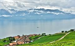 ~~Le Lman, ses vignobles, ses montagnes, ses villages et...ses nuages !!~~ (Jolisa) Tags: lman lac suisse nuages ciel sky orage montagnes brume mist montains maisons houses clocher alpes vignobles vignes