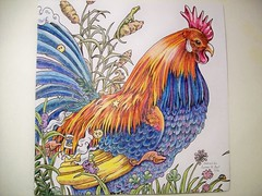 Rooster Left (Lynne M. B.) Tags: coloringadults coloring coloringbook coloredpencils drawing art illustration prismacolor chicken rooster animorphia kerbyrosana