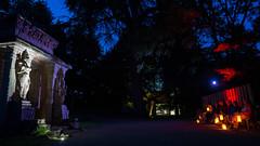 DSC05448 (regis.verger) Tags: temple zen nuit parc nocturne asiatique vgtal maulvrier