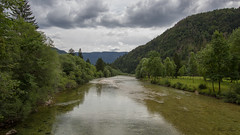 Sava Bohinjca, Slovenia (Masi Hast) Tags: flyfishing flytying