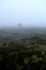 (Callum O' Keeffe) Tags: morning ireland shadow summer green nature wet fog 35mm dark lens landscape fuji cork silhouettes july x hills fujifilm limerick munster boggy galtees xe1