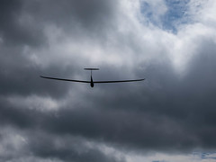 LS6 off into the distance (Balleka) Tags: gliding
