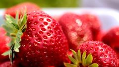 the juiciest (Clarke Knight) Tags: red summer food fruit juicy strawberry farm joy delicious eat ripe