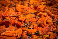 Sin ti, somos nada (OneMarie!) Tags: orange peru chili dry spices spicy dried aji picante tacna curibaya