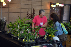2016-07-23 08759 Orchid Show, SF County Fair Bldg (Dennis Brumm) Tags: sanfrancisco california july 2016 orchids exposition flowers plants bromeliads
