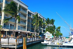 Key West (Florida) Trip 2015 0487Rif 4x6 (edgarandron - Busy!) Tags: florida keys floridakeys keywest harbor harbors
