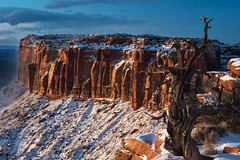 After the End (courtney_meier) Tags: junctionbutte dawn canyonlands canyonlandsnationalpark utahjuniper treeskeleton morning morninglight sunrise snow snowscape desertsnow winter wintersunrise redrock redrockcountry utah nationalparks nationalpark usnationalparks tree