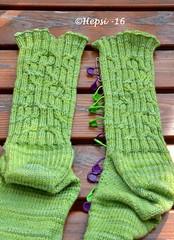 2016-07-26 030 (hepsi2) Tags: socks sukat sukkia tds2016