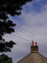 Collar note (Nekoglyph) Tags: hinderwell yorkshire bird grey blue clouds sky tree leaves urban cables wires chimney pots orange gable collareddove