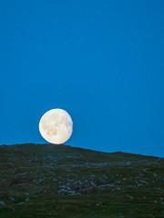 P7230353 (vekkan) Tags: borgefjell norja vaellus