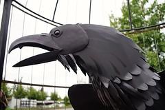 Iron Crow (Bgmini1) Tags: sculpture publicart crow metalsculpture sonya7 pentaxm35mmf2