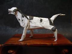 Dalmatian (Zendi@Home) Tags: kawahata dalmatian origami