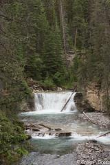 Johnston Canyon-1144.jpg (CraigG144) Tags: alberta banffnationalpark johnstoncanyon improvementdistrictno9 canada ca