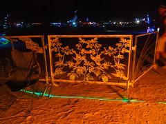 Burntanical Garden Fence (michicat) Tags: burningman brc blackrockcity playa nevada burningmanatnight fire fireart