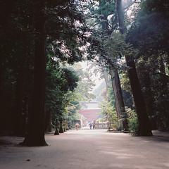 R1-33 -  (redefined0307) Tags:      zenzabronicas2 zenzabronica mediumformat film japan ibaraki kashimashrine travel kodakportra160