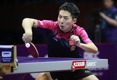 FANG_Bo_WTTC2015_R_G_7900R (ittfworld) Tags: world sport ball championship shanghai emotion action young tennis tabletennis junior championships chine